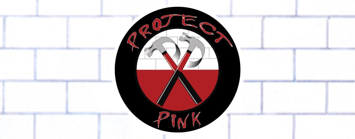 Project-Pink-1380x540-TS.jpg