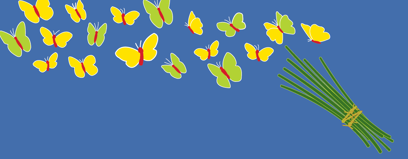 butterfly-1380x540-050317.png
